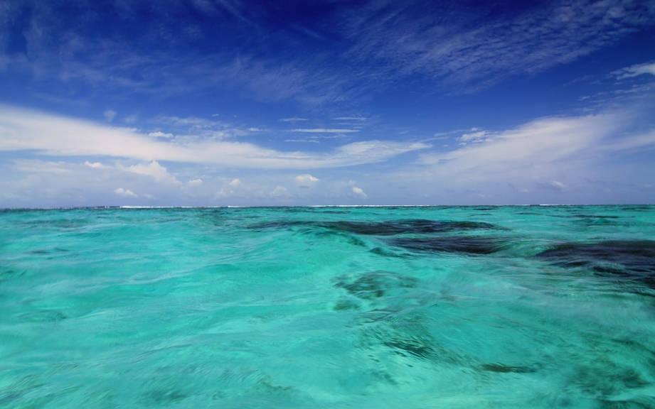 Hoy es el día de los océanos: ¿Por qué se celebra un 8 de junio?