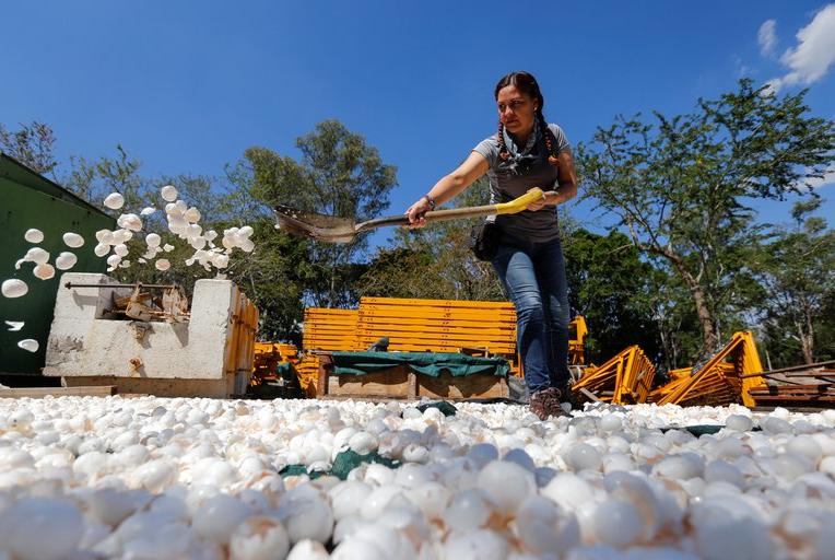 Innovadora iniciativa para limpiar los ríos contaminados de México