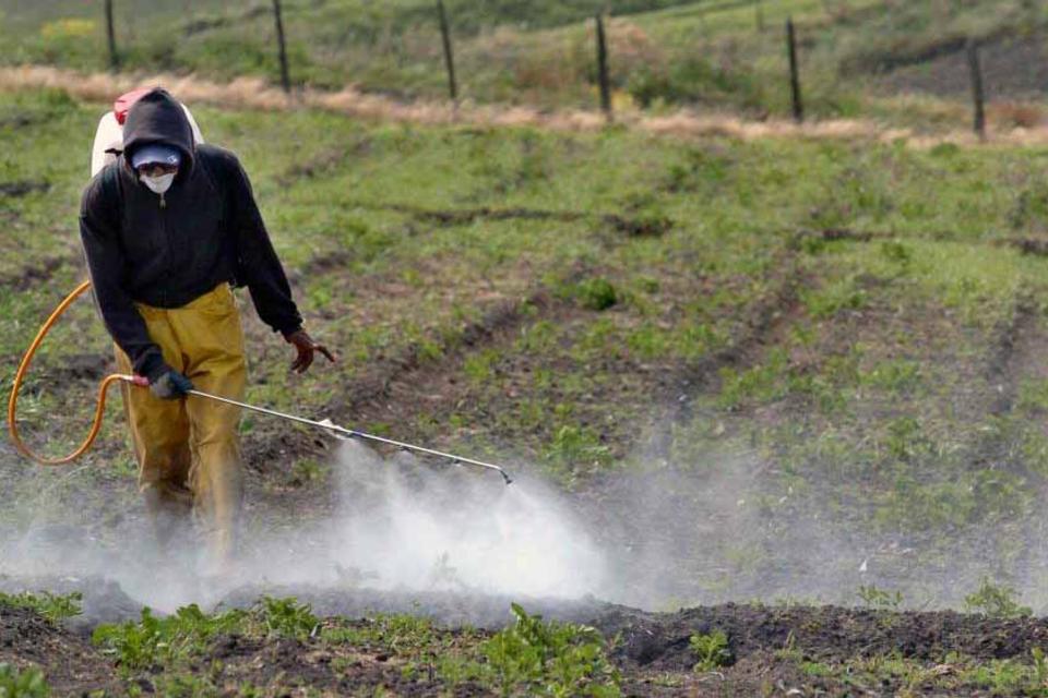 Pediatras advierten de los efectos nocivos de los agroquímicos en la infancia