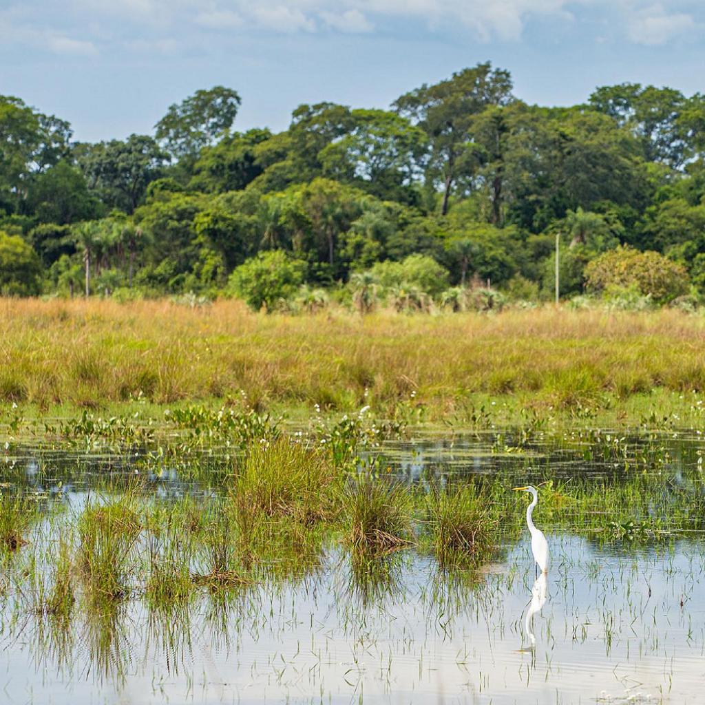 Parque Provincial Apipé Grande suma un nuevo destino ecoturístico a Corrientes