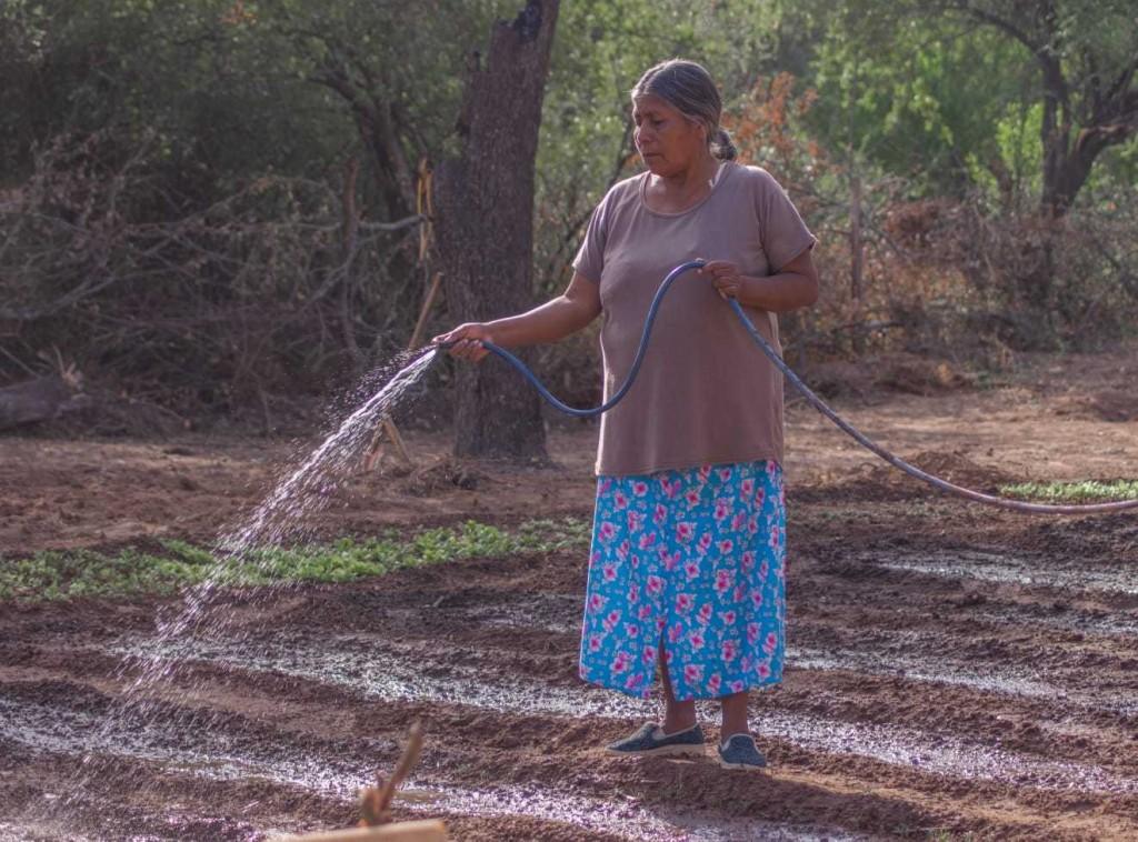 Ocho proyectos ambientales chaqueños fueron seleccionados para recibir financiamiento internacional