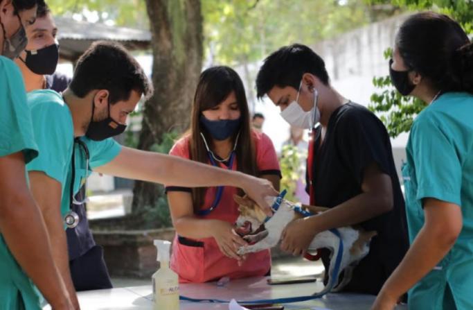 La Unne monitoreará el impacto de la pandemia en actividades académicas