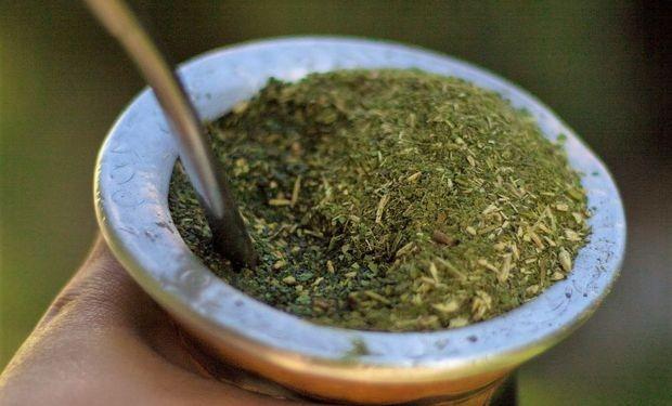 El consumo de yerba mate creció 4,5% en el mercado interno en los primeros siete meses