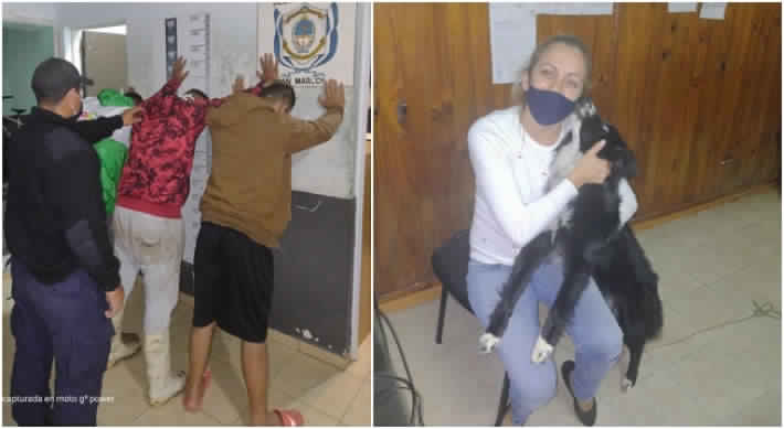 En moto y a plena luz del día robaron una perra de la puerta de su hogar