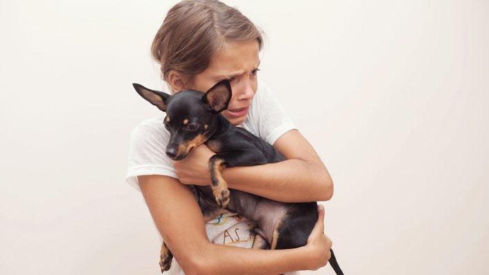Convivir con animales mejora nuestra salud y bienestar